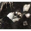 Серьги с зубами морской лисицы и жемчугом